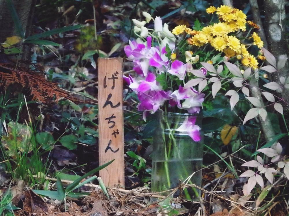 げんちゃんのお墓