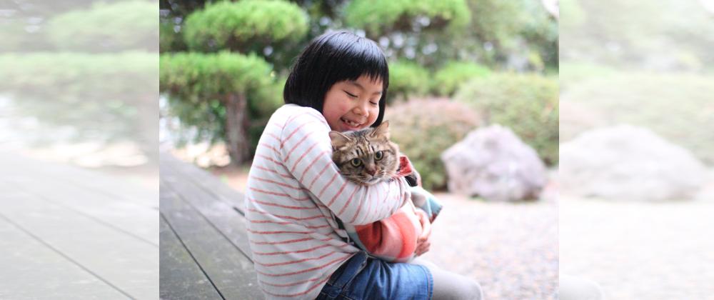 5000匹が殺処分される山口県で猫の命をつなぐ旅館をつくりたい!