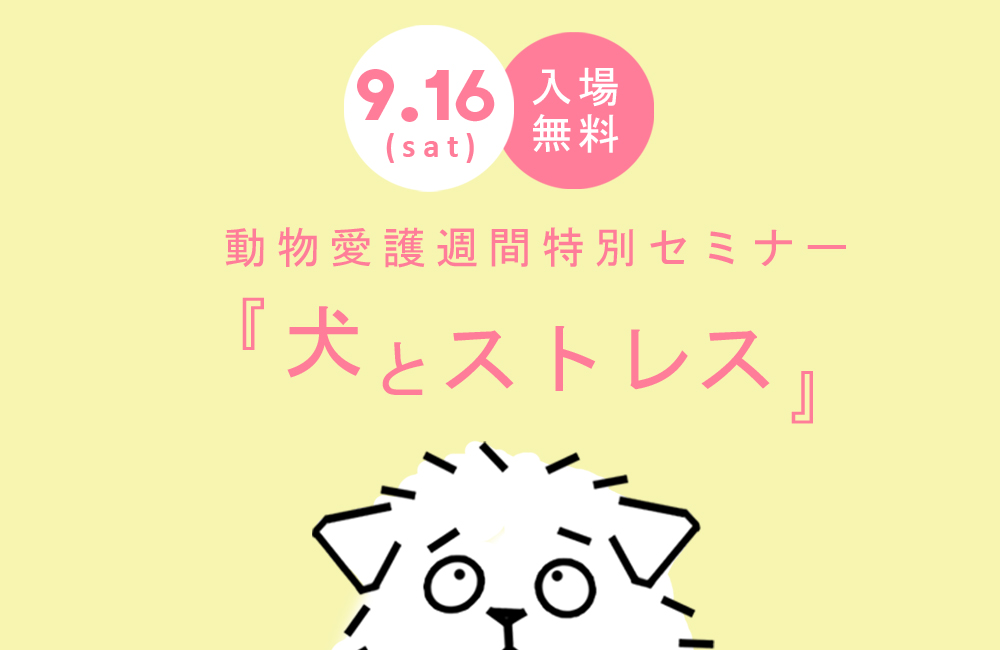 〈動物愛護週間特別セミナー〉「犬とストレス」by ボイスオブアニマルズ。締め切り迫る!